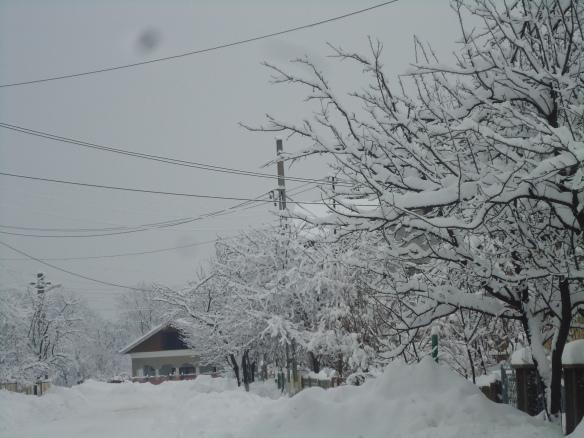 Iarna la noi